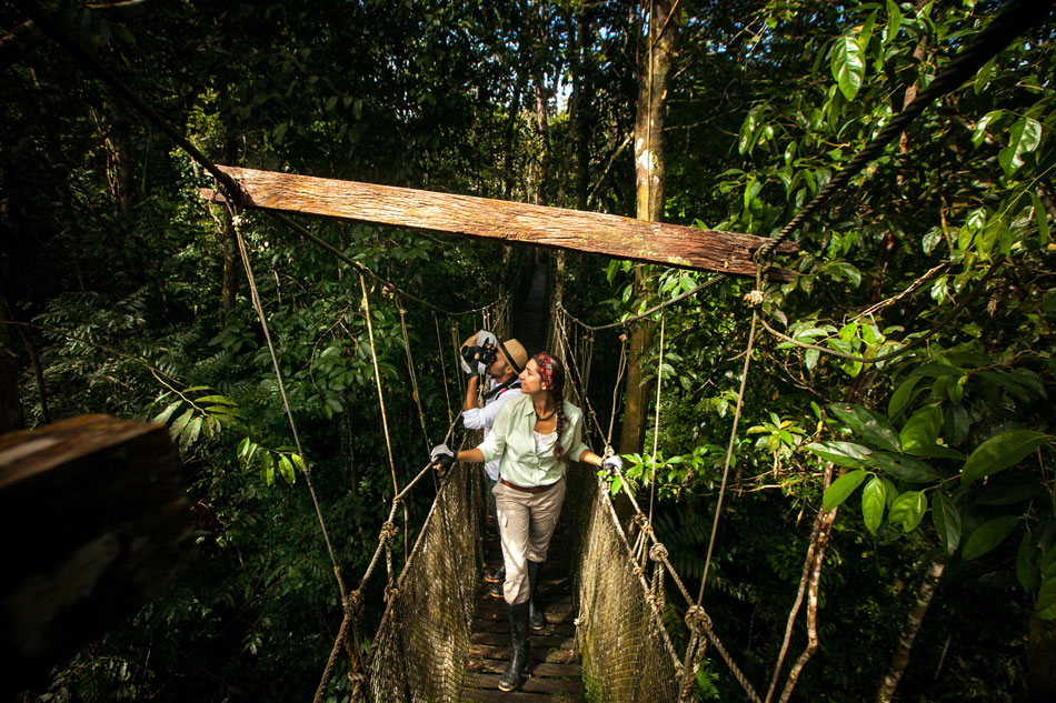 Discover your dream Amazon vacations